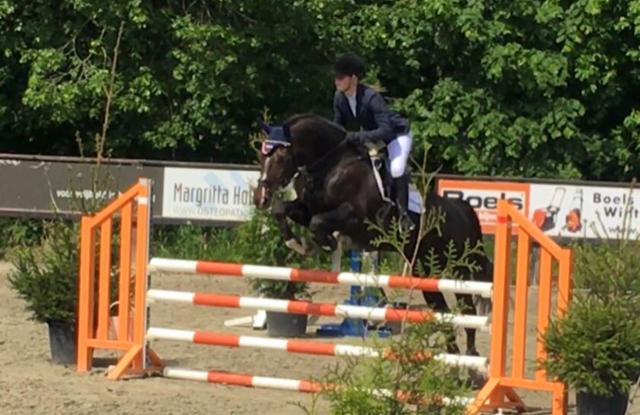 Feline te Koppele wint startplek Gelderse kampioenschappen springen